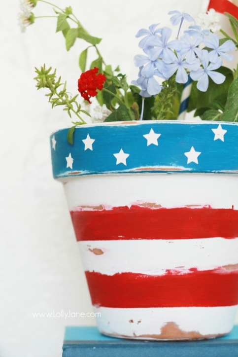 stars-stripes-flower-pot1