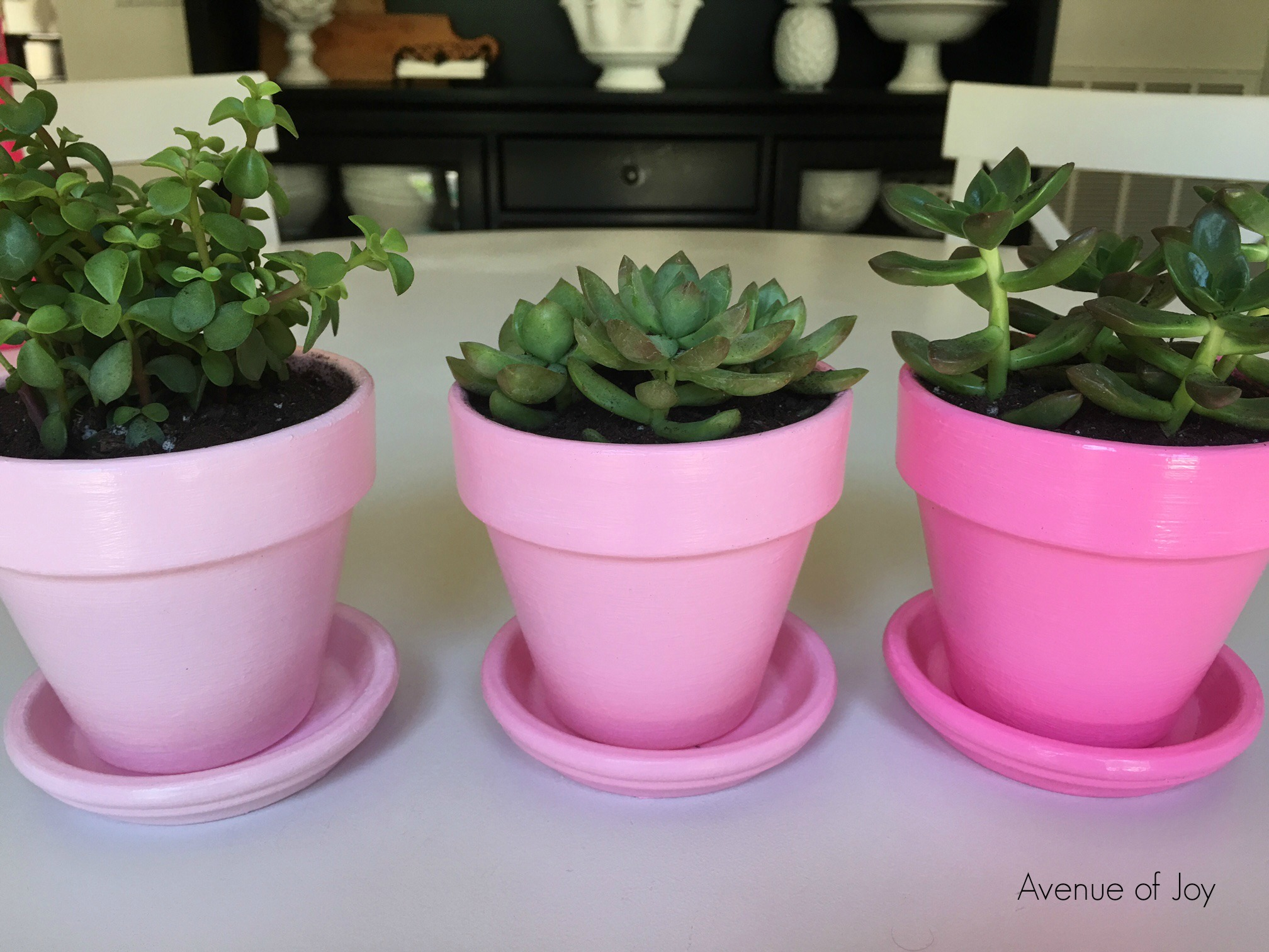 Diy ombre flower pots avenue of joy these sweet little ombre flower pots where so easy to make and are a nice addition to my new home office im still working on the last odds and ends of the mightylinksfo